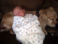 Elise_sleeping_with_cameron